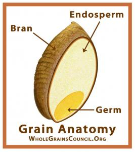Whole grains. Better than processed grains. Add more of them to your diet.